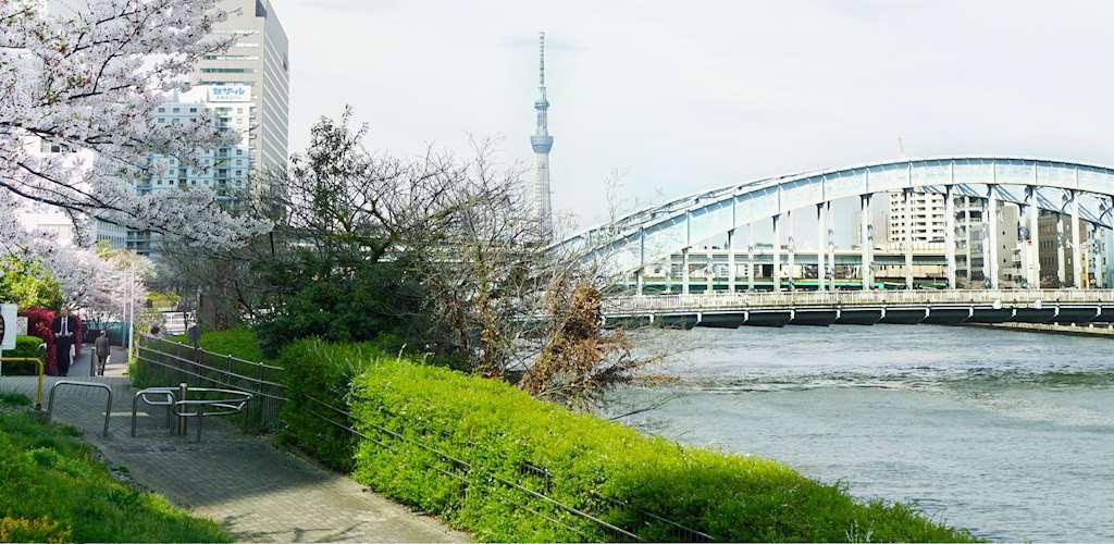 Tokyo Galaxy Japanese Language School Go Go Nihon