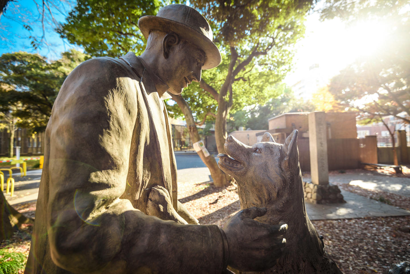 Hachiko is at the heart of Shibuya, learn about this ...