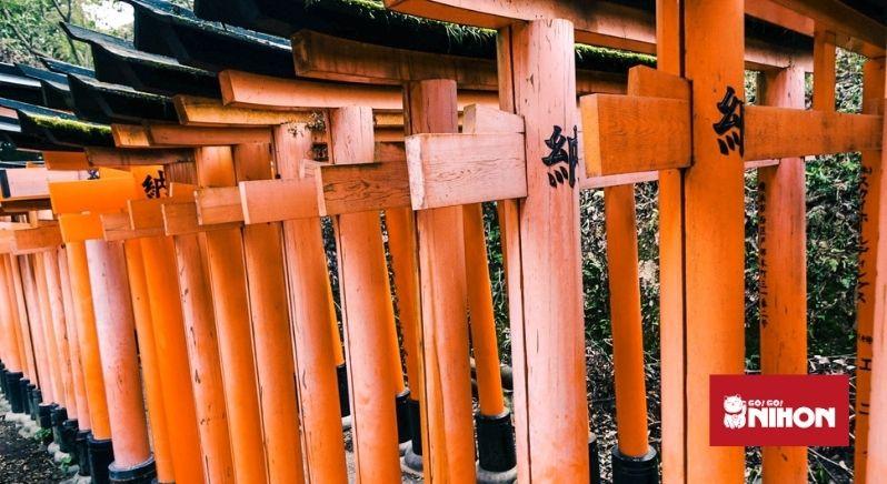 Flera av Fushimi Inari-helgedomens klarröda portar