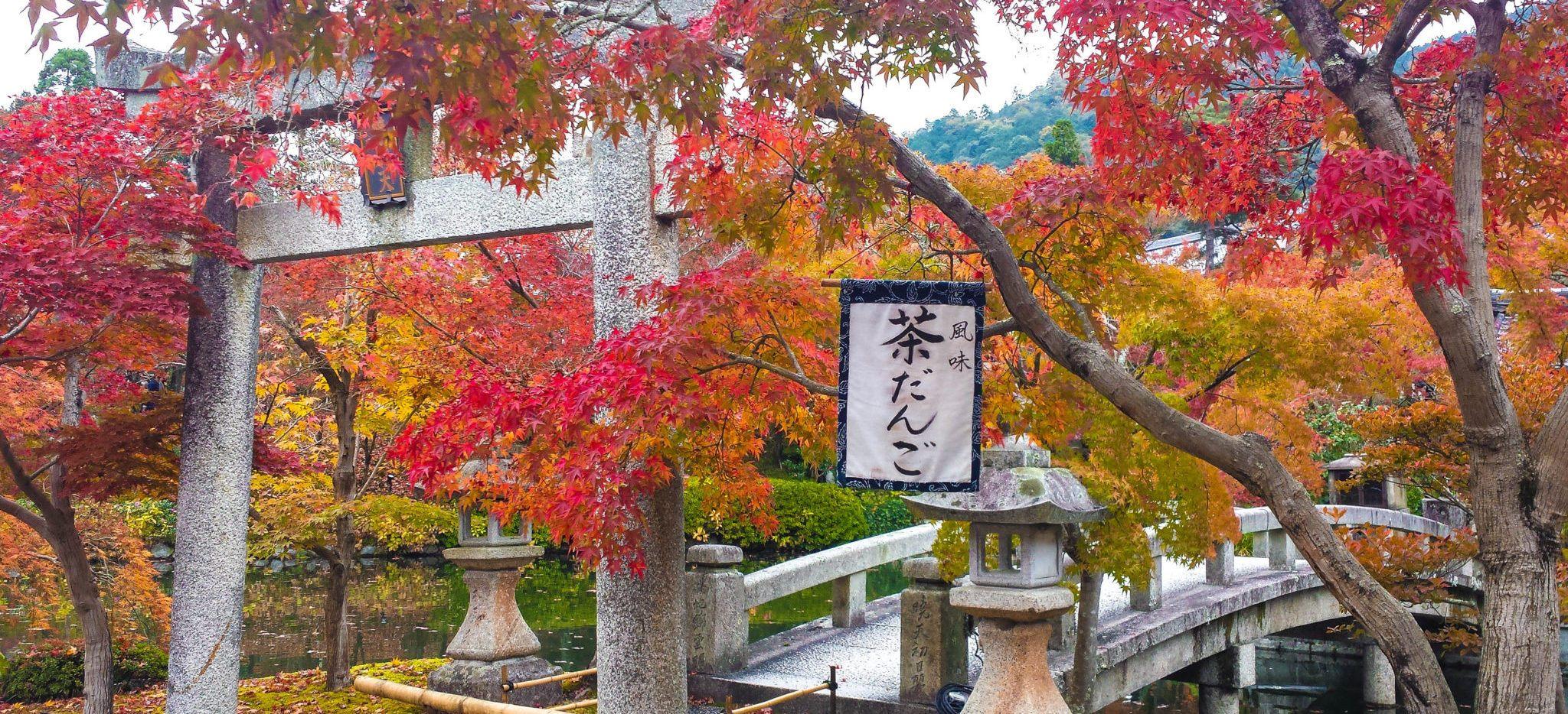 Autumn in Japan - Kyoto