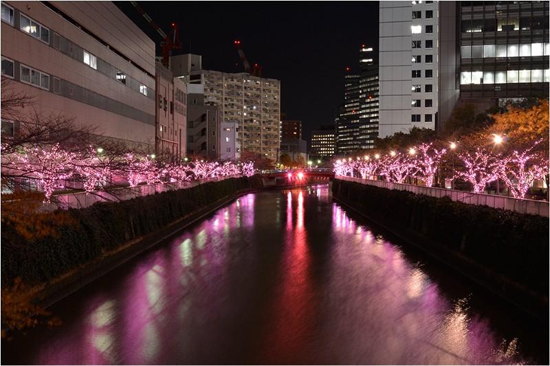 Illumination - Megurogawa