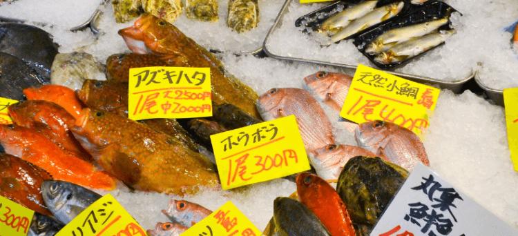 O mercado de peixes de Toyosu
