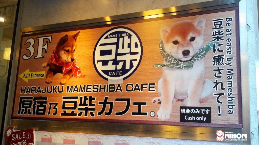 Mameshiba Cafe à Harajuku