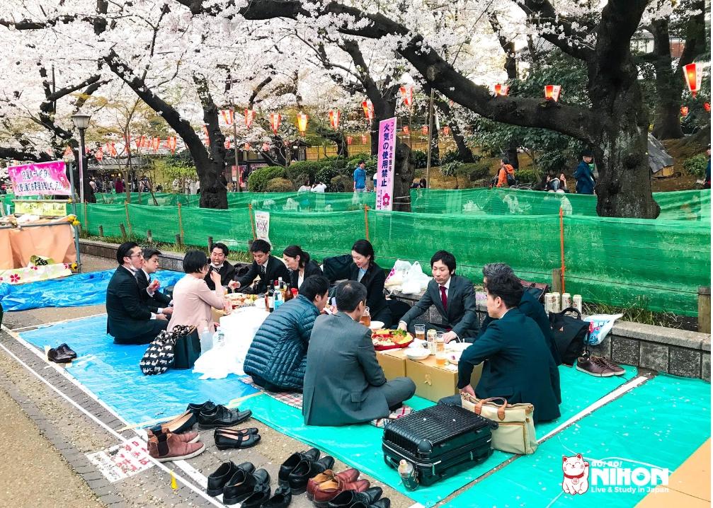 Kontorsarbetare firar hanami