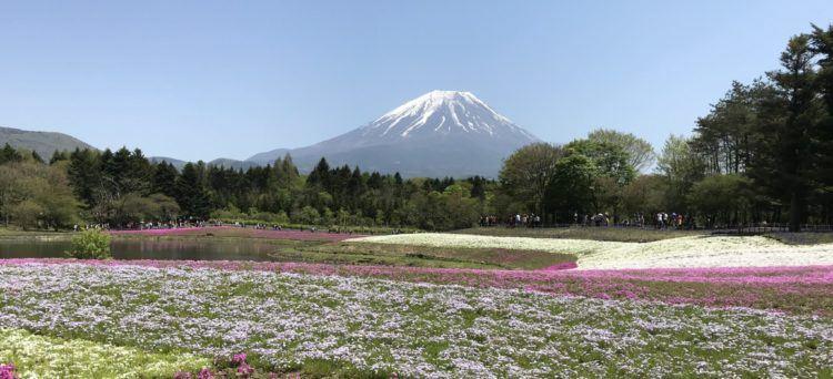 vårtecken i Japan