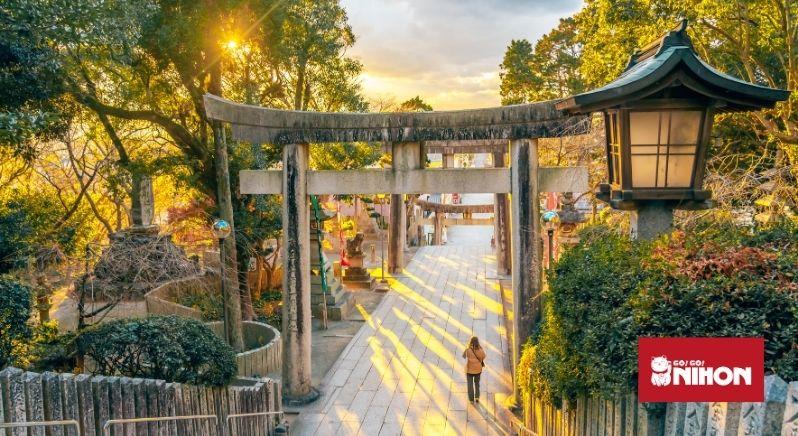 Torii gate in Fukuoka