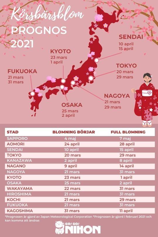 2021 cherry blossom forecast Swedish
