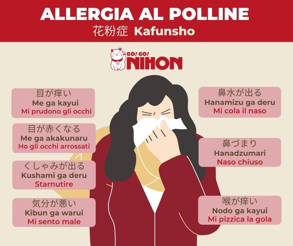 Hay fever infographic Italian