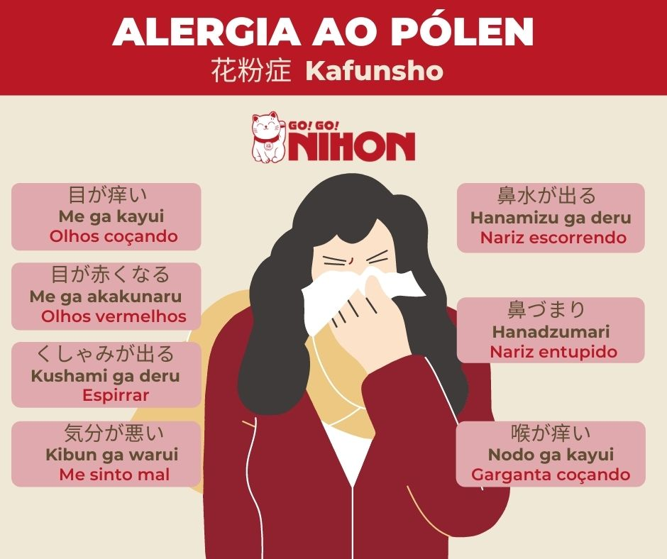 Hay fever infographic Portuguese