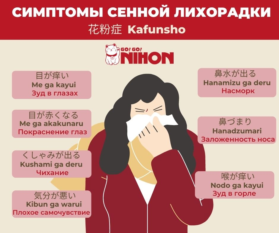 Hay fever infographic Russian