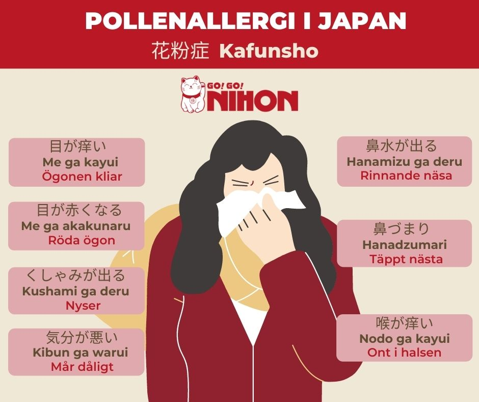 Hay fever infographic Swedish