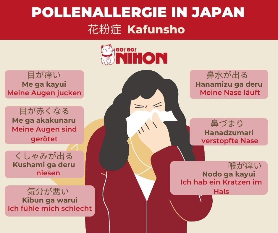 Hay fever infographic German