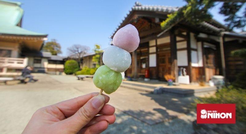 Hanami dango japanese sweet