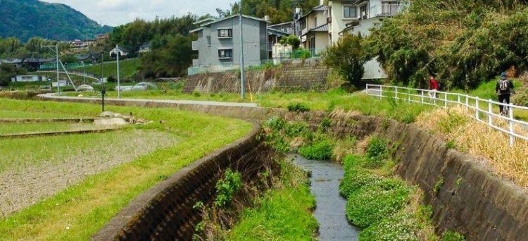Vivere a Oita nel Kyushu